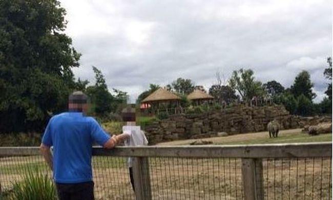 Ez történt a rinocéroszok közé küldött fiúval