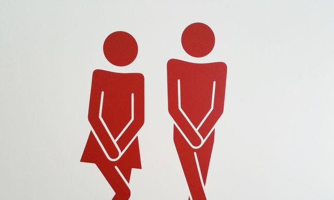 Hiába van wc Szentesen, csak 8-16-ig lehet pisilni!