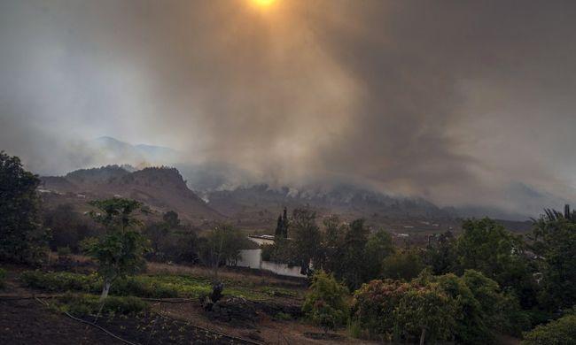 Hat napig égett az erdő, amit vécépapírral gyújtottak fel