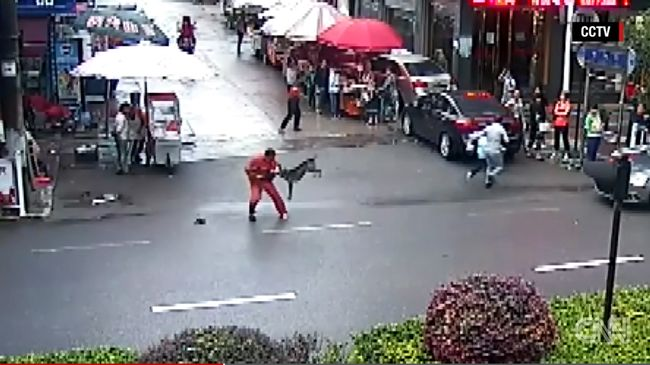 """23 embert támadott meg a """"sátán kutyája"""" - videó"""