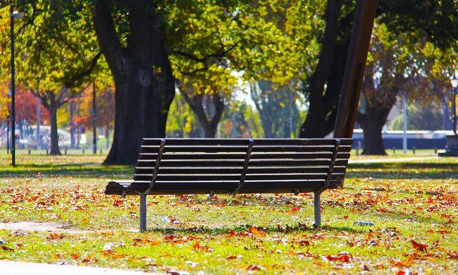 Holttestet találtak Zalaegerszeg egyik parkjában