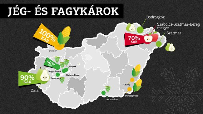 Alig lesz magyar termés az áruházakban, mindent elvert a jég