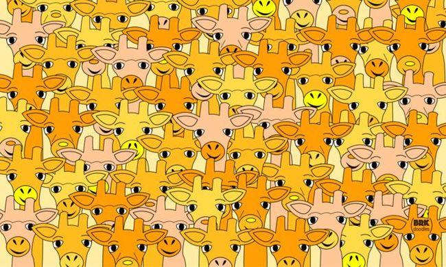 Ez a képrejtvény őrjíti meg az internetezőket: Ön megtalálja Yodát?
