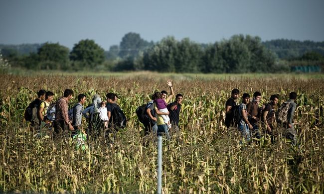 Szerszámos ládákba bújva próbáltak átjutni a migránsok a határon