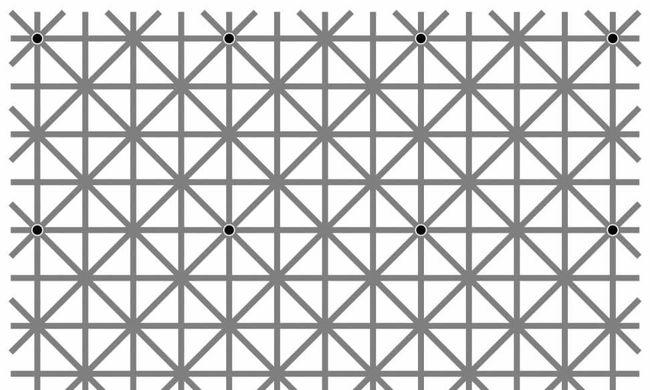 Hány fekete pontot lát a képen? Ezen kiakadt az internet
