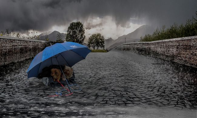 Kétféle riasztást adtak ki: sok esővel jön a durva szél