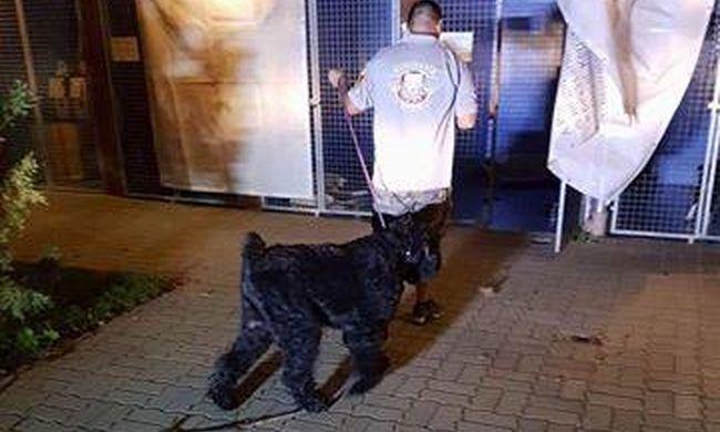 Mentőktől védte földön fekvő gazdáját a 70 kilogrammos kutya