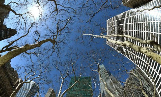 42 emeletes épületről zuhant le az építészmérnök