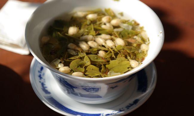 Szuperegészségesnek hittük eddig: lehet, hogy mégis súlyos betegséget okoz a zöld tea?