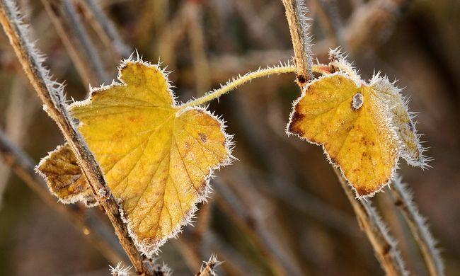Csípős őszi napok várnak ránk