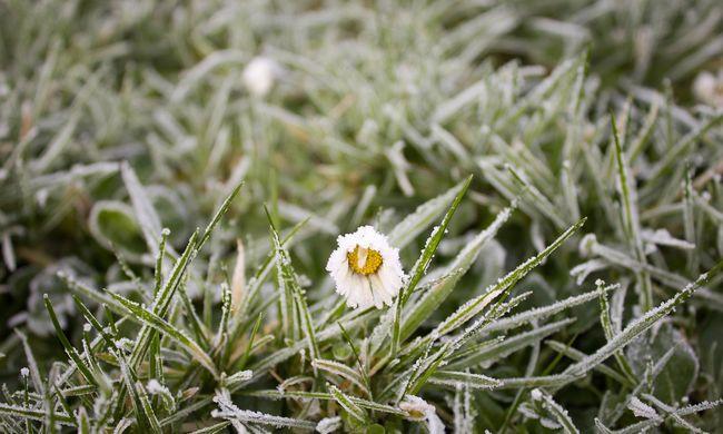 Rossz hírek: visszatér a fagy, erősödik a szél