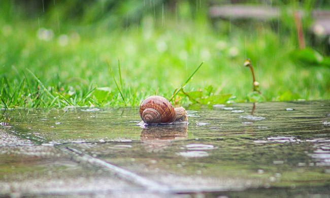 Jön a hideg: az eső és a szél sem kímél majd