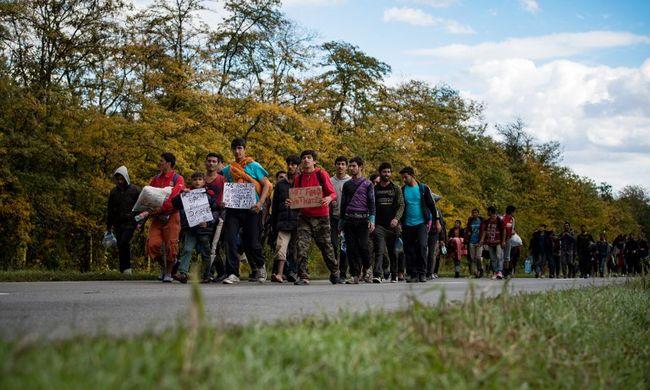 Rengeteg migráns rohamozta meg a magyar határt