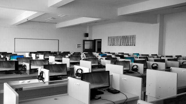 Az irodában gyilkolták meg a számítógépes cég fiatal dolgozóját