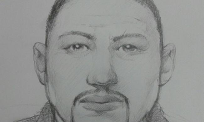 Nagyon keresik a rendőrök ezt a csaló férfit, felismeri?