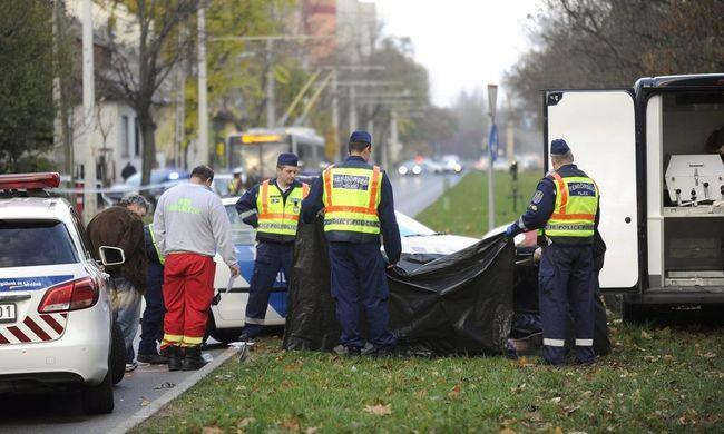 Tragédia: 50 méterre az otthonától gázolták halálra János bácsit