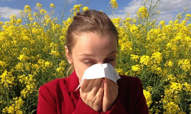 Kiderült, mi felelős azért, mert növekszik az allergiások száma
