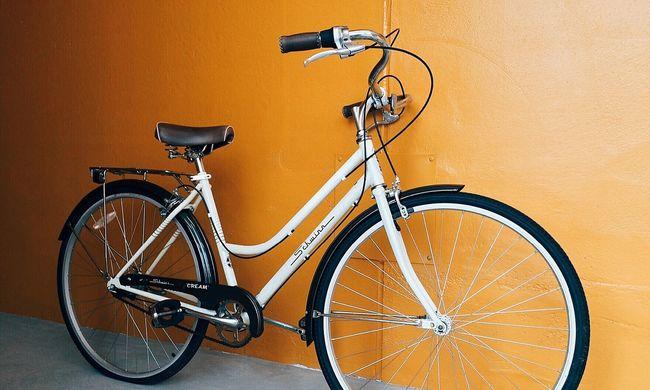 Nem válogatott a tolvaj: radiátort, biciklit és még diót is lopott
