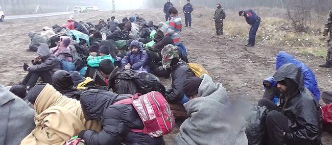 Több mint félszáz migráns próbált hazánkba szökni egy nap alatt