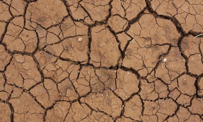 A Google is bizonyítja a klímaváltozást