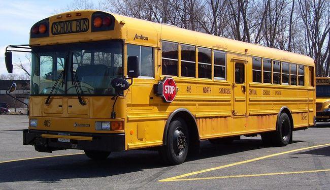 Fának vezetett egy iskolabuszt: hatan meghaltak