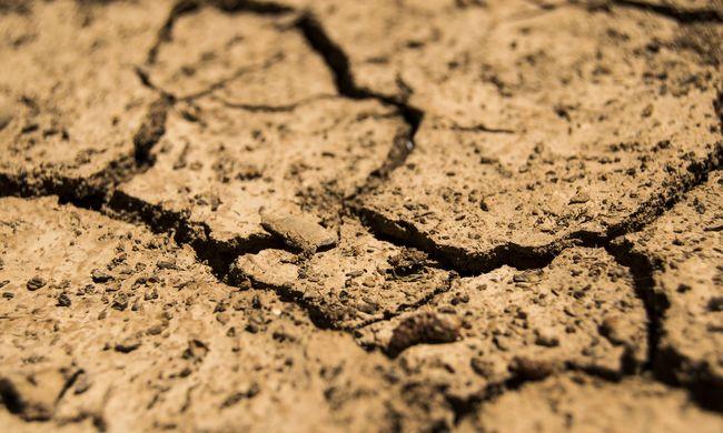 Kiderült, hogy az emberek tényleg mindennél rosszabb hatással vannak a Föld légkörére