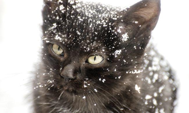 Beköszöntött a tél, hó lepte el a magyar tájat