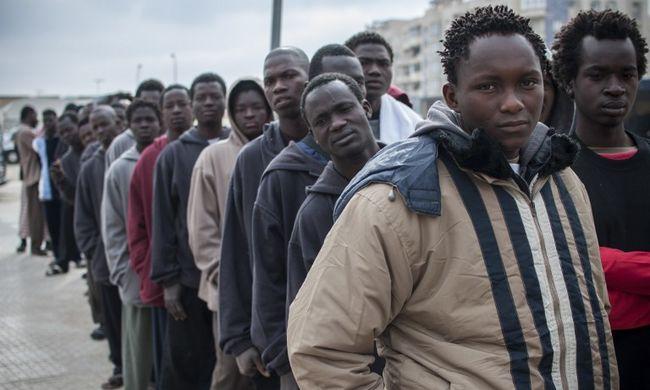 Rengeteg migráns próbált Magyarországra jutni