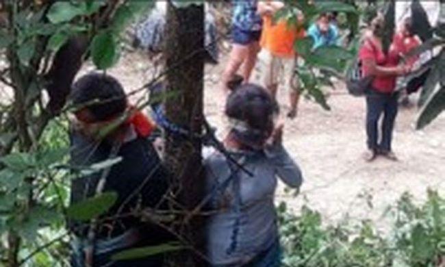 Büntetésből kikötözték: tűzhangyák csípték halálra a nőt