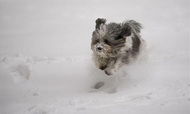 Már a másodfokú riasztást is kiadták: durva vihar hűti le a levegőt, havazni is fog
