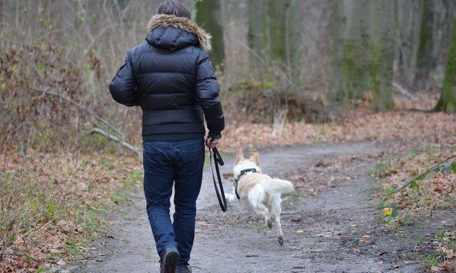 Tragikus: kutyasétáltatás közben halt szörnyet a férfi