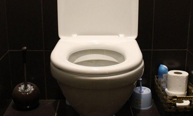 Sokkot kapott a kisfiú, amikor a vécébe nézett - fotó