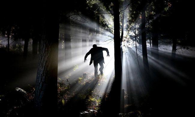 Horror az erdőben: rejtélyes holttestre bukkantak