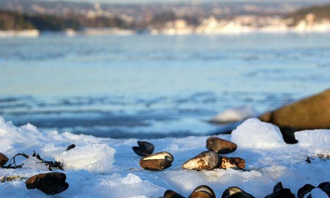 Családi vita után a jeges folyóba vetette magát az asszony