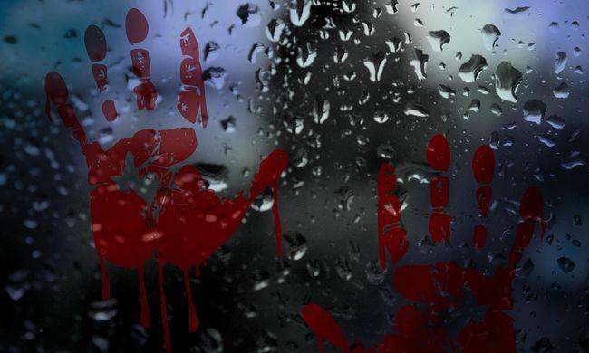 Lakásán találták meg a budapesti prostituált vérbe fagyott holttestét, ő a gyilkos