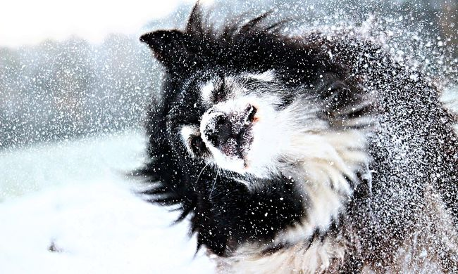 Kiadták a riasztást: havazással jönnek a dermesztő mínuszok