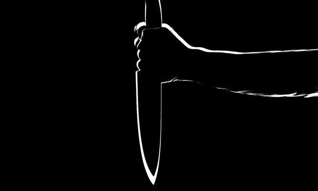 Visszatért a tetthelyre a darabolós gyilkossággal vádolt darnózseli hentes
