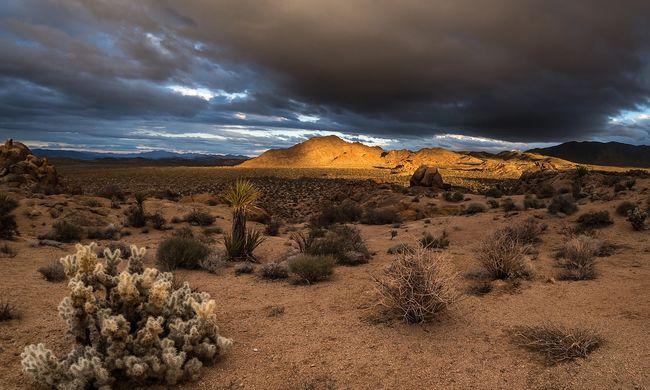 Csak pár óra kellett: szomjan halt a sivatagban egy turista