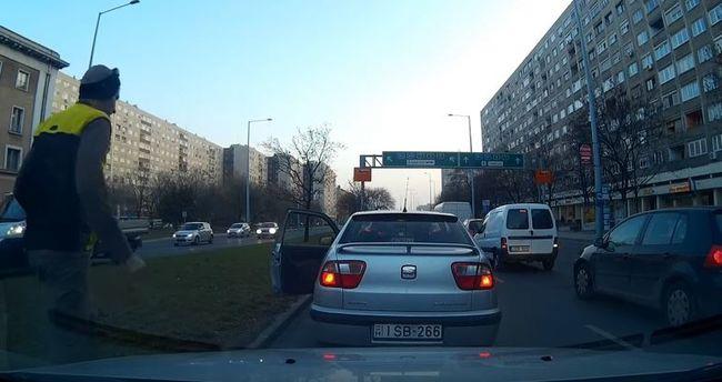 A budapesti autós ezzel a tettével mutat példát a világnak - videó