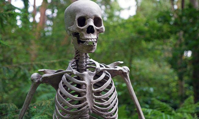 Folyóból kihalászott emberek csontjait rejtette a csomagtartó