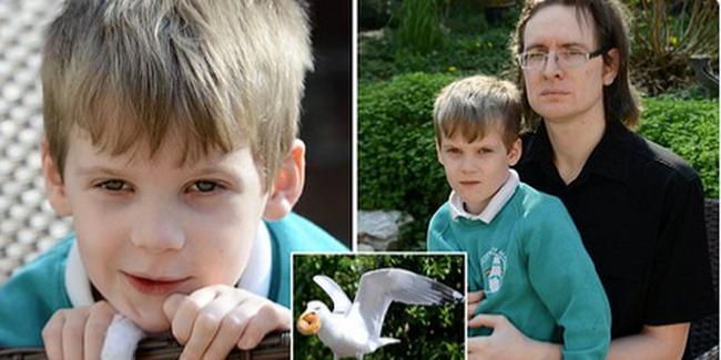Ömlött a vér a kisfiú kezéből: váratlan madártámadás miatt került kórházba