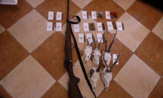 Kivonult a TEK Pest megyében, lecsaptak a bűnözőkre - videó