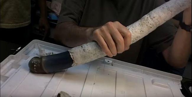 Megdöbbentek a tudósok: most először látták élve a hatalmas férget - videó