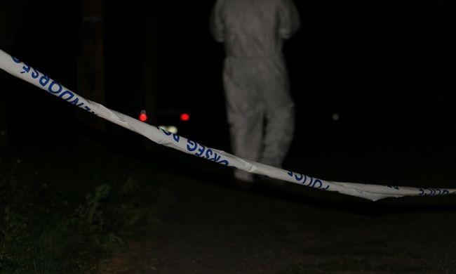 Megkínzott férfi holttestére bukkantak Balatonföldváron, ő a gyilkos - videó