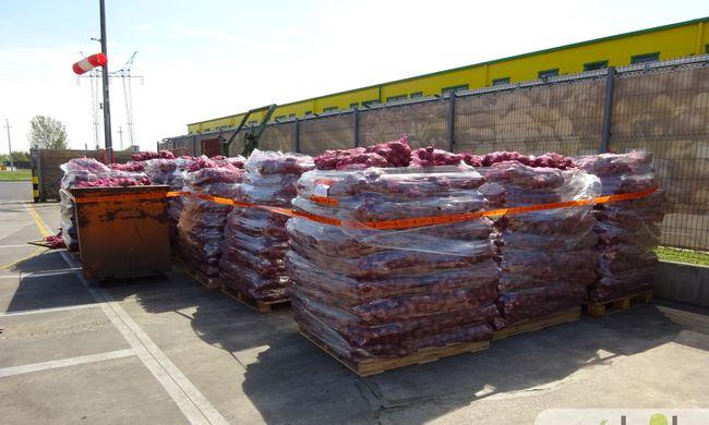 Veszélyeztette a magyar krumplit, ezért megsemmisítették a lengyel szállítmányt