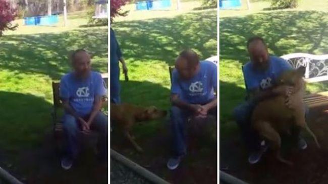 Olyan brutálisan lefogyott a kórházban, hogy saját kutyája sem ismerte fel