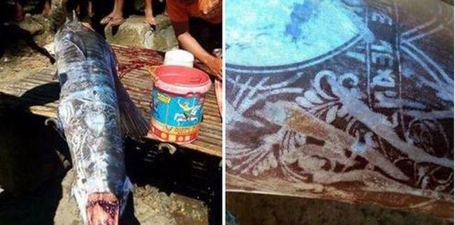 Tetoválásokkal teli halat fogtak a halászok, senki sem tudja, mi történt