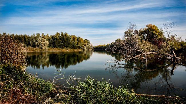 Szörnyű hírek: tinifiú holttestét sodorta a Duna