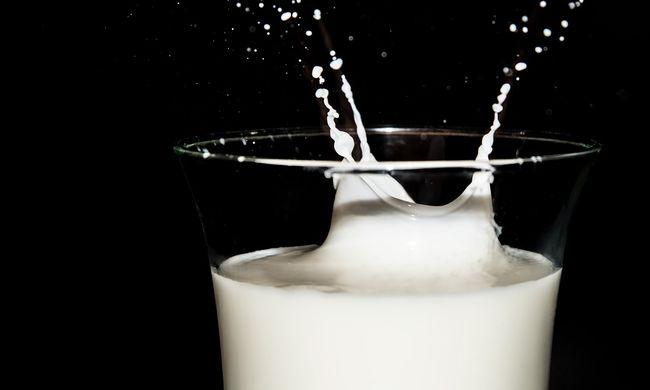 Hatalmasat hibáztak: az eltűnt gyerekek a tejesdobozon nem is eltűntek