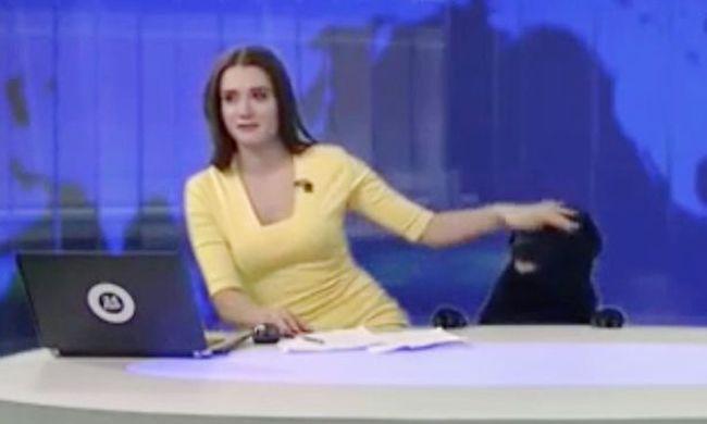 Élő adásban hozta a frászt a műsorvezetőre a vendég - videó